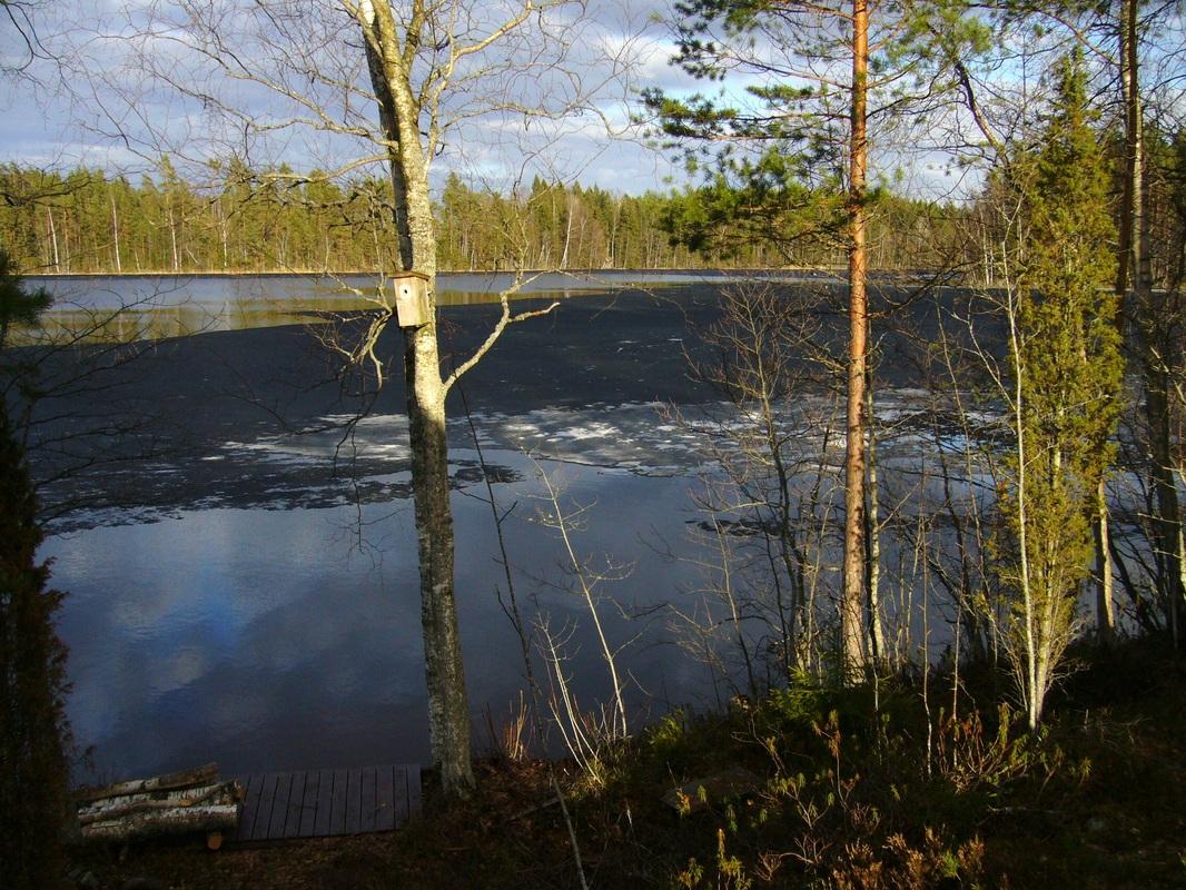 Jäsentiedote 2/2013 - Salmijärvi-Tyystiö-Kaituri Seura ry